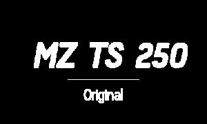 logo_mz